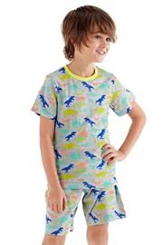 Pidžama za dječake Roar kratka
